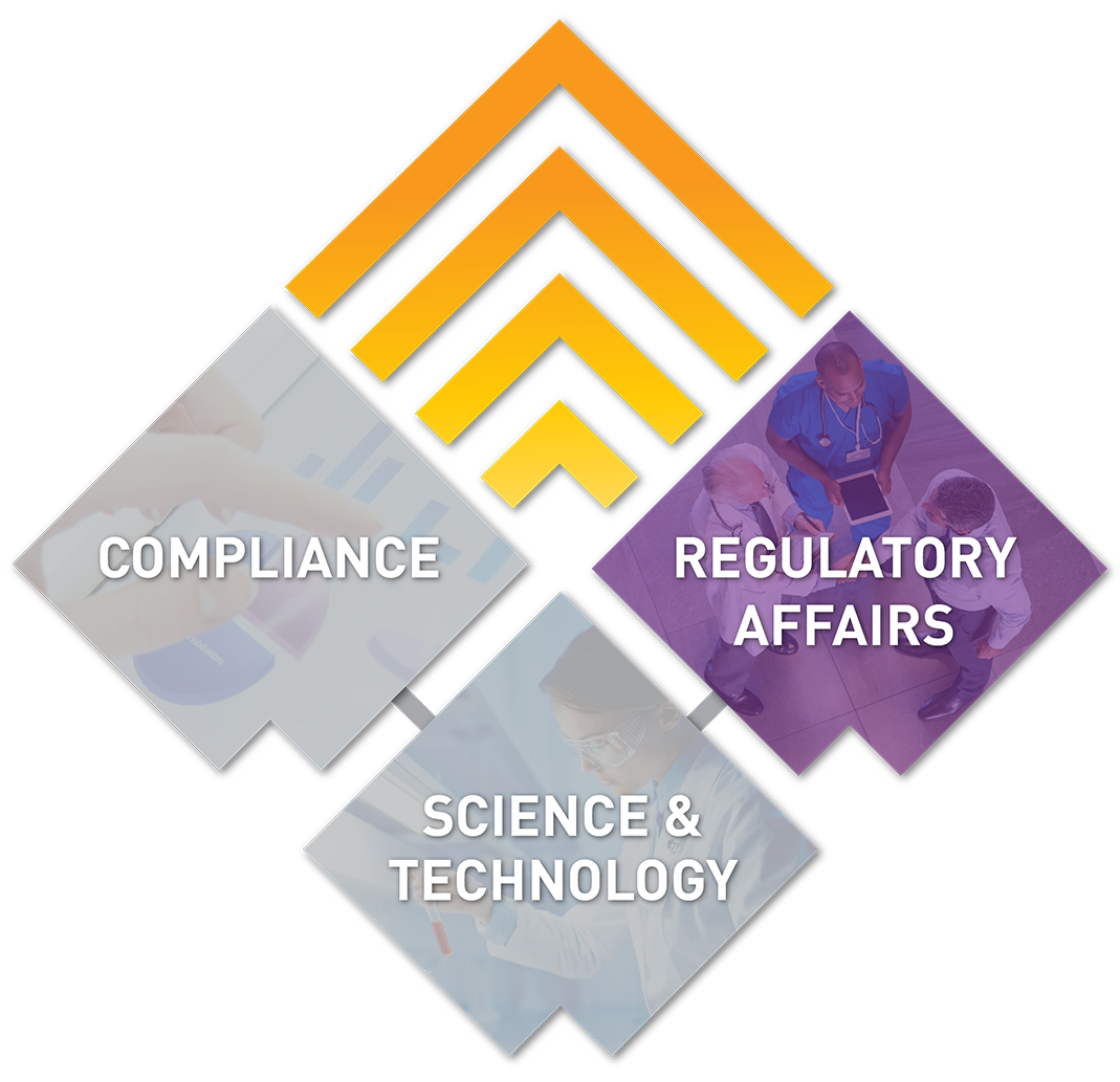 Regulatory Affairs Consulting Company - Lachman Consultants