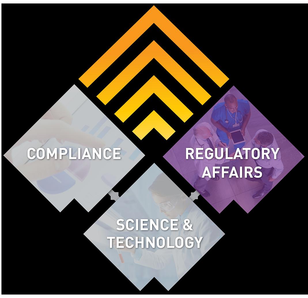 Regulatory Affairs Consulting - Lachman Consultants